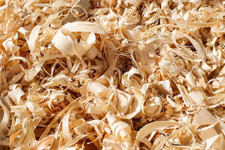 Hobelspeane aus denen die nachhaltigen rezemo Kaffeekapseln hergestellt werden