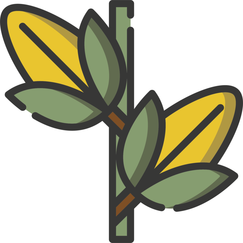 rezemo Icon Mais fuer Bindemittel aus Pflanzenstaerke