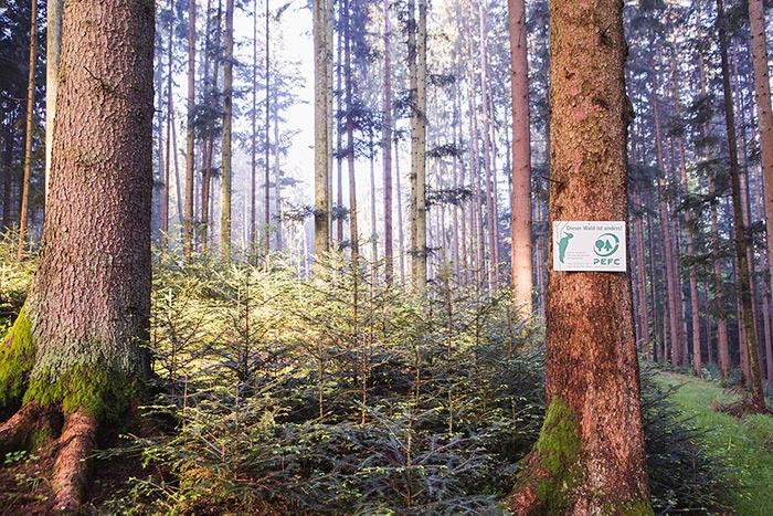 PEFC-zertifizierter Wald mit Schild