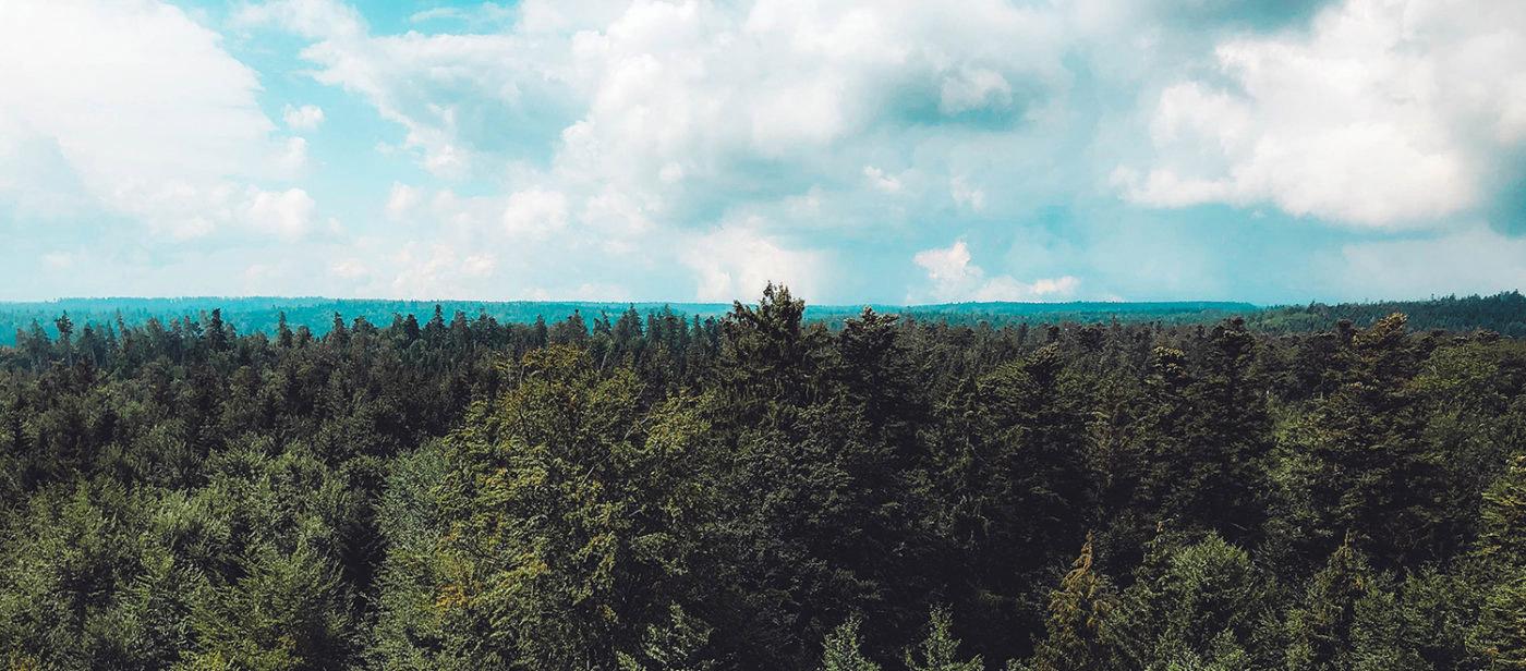 Panorama über dem Schwarzwald mit blauem, bewoelktem Himmel