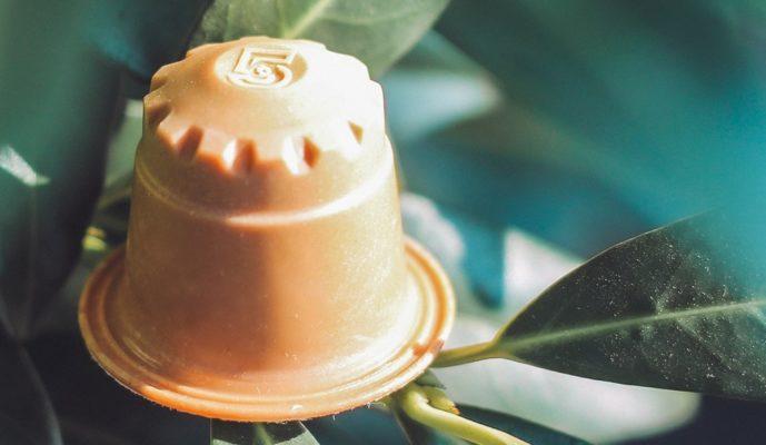 rezemo Edition auf grünen Blättern