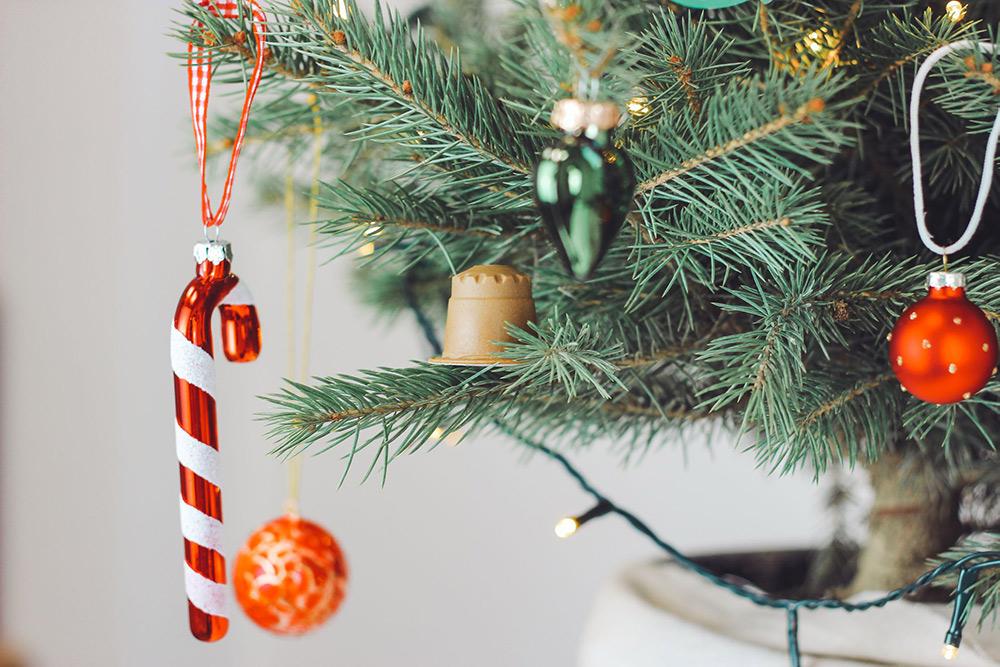 Nachhaltig angebauter Weihnachtsbaum mit rezemo Kaffeekapsel als Baumschmuck