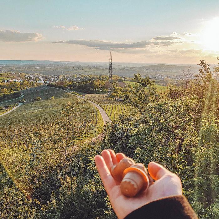 Urlaub im Ländle auf dem Sörenberg in Waiblingen mit rezemo